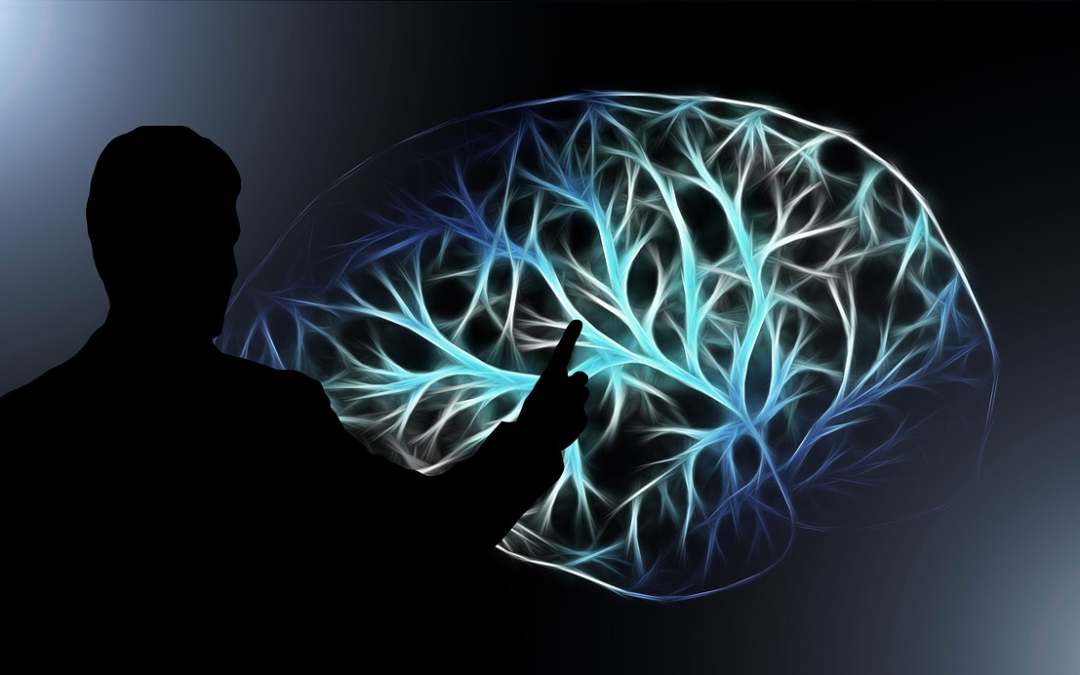 How to improve the functioning of your brain through exercise